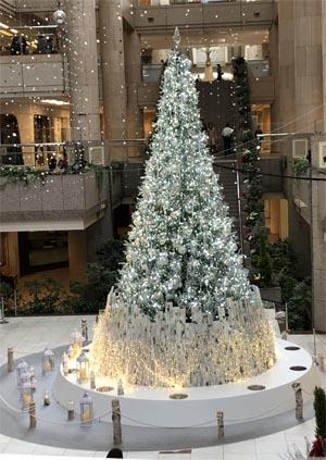 2019-12-10 10.40.10 クリスマスツリー.jpg